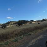 Kamilaroi Highway
