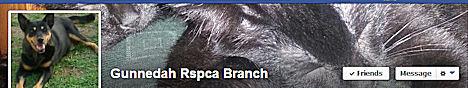 Gunnedah RSPCA Branch