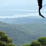 Wivenhoe Outlook, D'Aguilar National Park