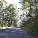 033_Vulcan Nomad Day Ride_Mount Sugarloaf Road