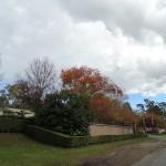 McNamara Park Day Ride_Hunter Valley Gardens