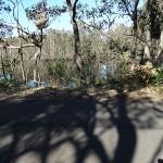 Birdie Beach Day Ride_Munmorah State Conservation Area