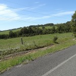 Myall Lakes Day Ride_Myall Way