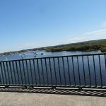 Myall Lakes Day Ride_Karuah River, Tea Gardens