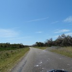 Myall Lakes Day Ride_Myall Lakes National Park