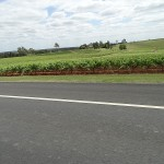 Inland Day Ride_Broke Road