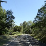 Broke Day Ride_Wollombi Road